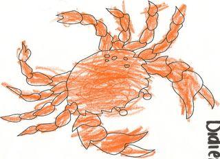 Crab0004